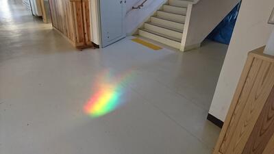 廊下に映る虹